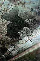 Pの影響でめっきが剥離した鋼材2
